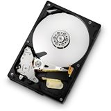 "500GB Hitachi CinemaStar 5K1000 HCS5C1050CLA382 8MB 3.5"" (8.9cm) SATA 3Gb/s"