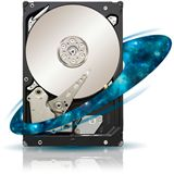 "500GB Seagate Enterprise Capacity 3.5 HDD ST500NM0001 64MB 3.5"" (8.9cm) SAS 6Gb/s"