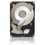 "1000GB Seagate Enterprise Value HDD / Terascale HDD ST1000NC001 64MB 3.5"" (8.9cm) SATA 6Gb/s"